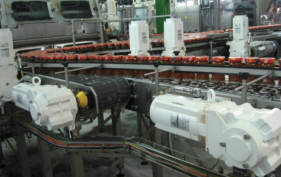 Food Processing & Packaging Conveyor