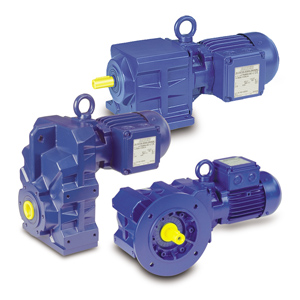 Bauer Gear Motors for Wastewater Treatment