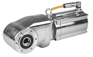 Bauer Stainless Steel Gear Motor IE4