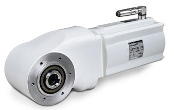 Bauer Gear Motor Washdown